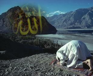 Tefekkür örneği: Allah ın emir verip özgür biraktigi yaratık: insan