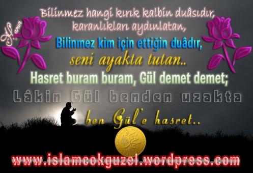 gulehasret_islamcokguzel