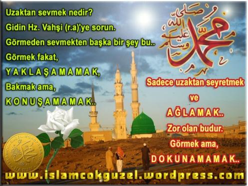 uzaktansevmek_islamcokguzel