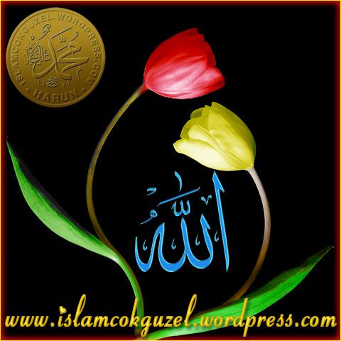 askla_islamcokguzel