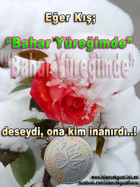 baharyuregimde_harununal